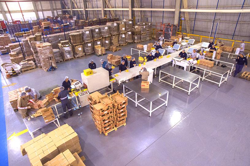empacotamento e etiquetagem de produtos